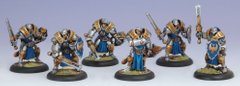 Warmachine Cygnar Sword Knight (Unit Box: 1 Captain, 5 Sword Knights) - Privateer Press Miniatures PRIV-PIP 31029